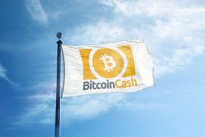 SBIVC、ビットコインキャッシュの上場廃止へ