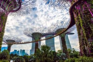 シンガポール税務当局、仮想通貨取引への物品サービス税免除を提案