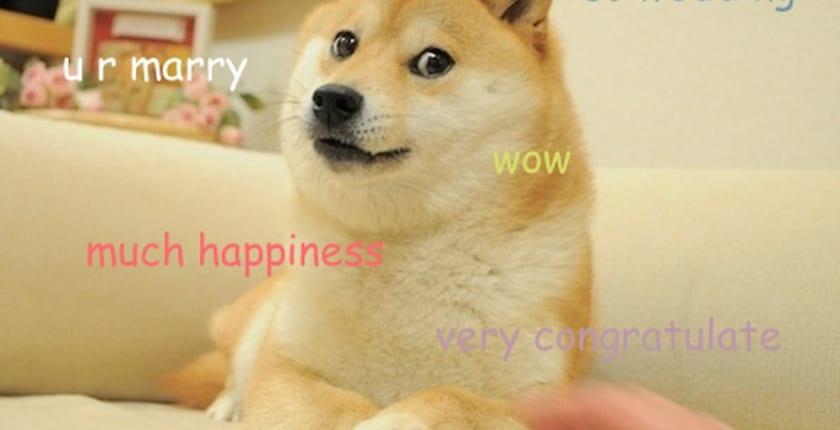 柴犬がモチーフの「ドージコイン」、バイナンスUSに上場
