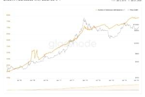 個人トレーダーが増加か──1ビットコイン以上保有のアドレスは着実に増加