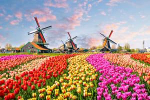 EUのデジタル通貨、主導権は誰が握る──オランダ中銀、CBDC報告書を発表