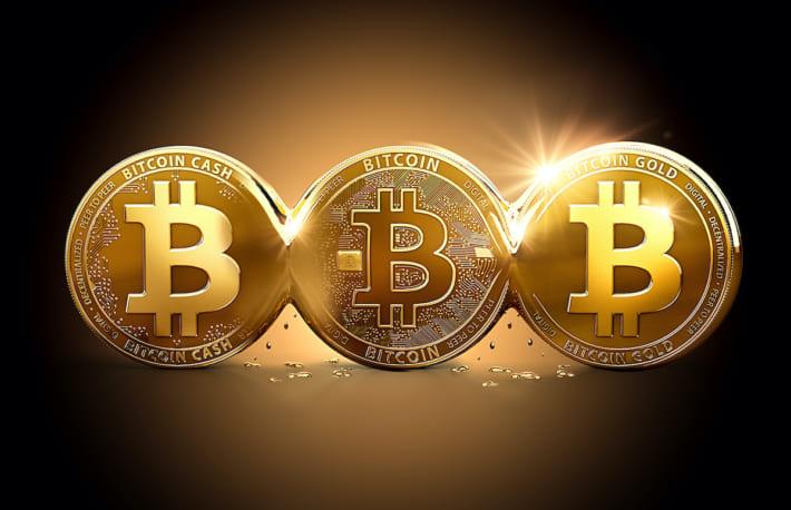 ビットコインから分裂した暗号資産、年初からのパフォーマンスがBTCを上回る