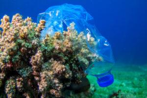 海洋プラスチックで作る衣料、追跡機能に「ブロックチェーン」と仏ブランドが宣伝しない理由
