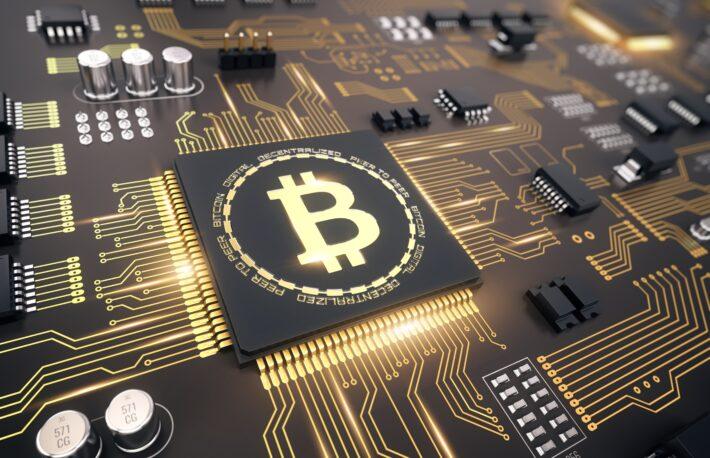 """ビットコインの""""クジラ""""、過去最多を更新──機関投資家の参入継続の兆し"""