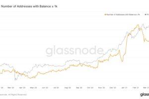 """ビットコインの""""クジラ""""減少、利益確定売りで──個人の買い意欲強い:データ"""