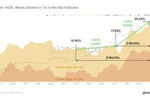 保有期間1〜6カ月のビットコインは25%──長期保有傾向が強まる:データ