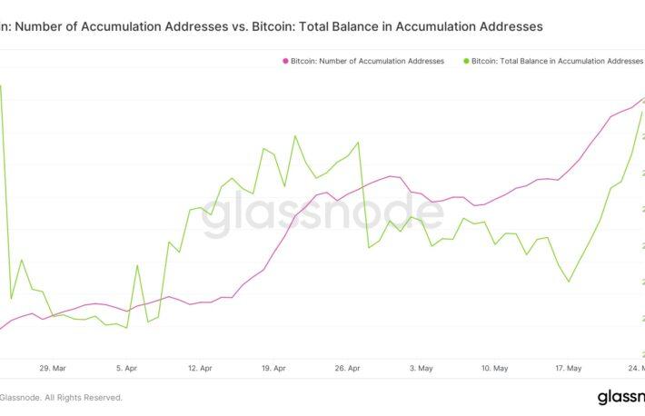 ビットコイン保有者数、過去最高を更新:データ