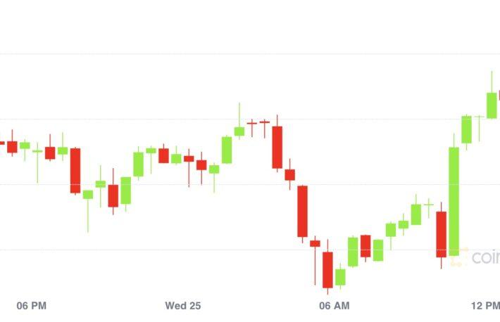 【市場動向】ビットコインは4万8000ドル回復、カルダノに勢い
