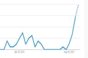 ソラナのGoogle検索数がピーク、その意味は
